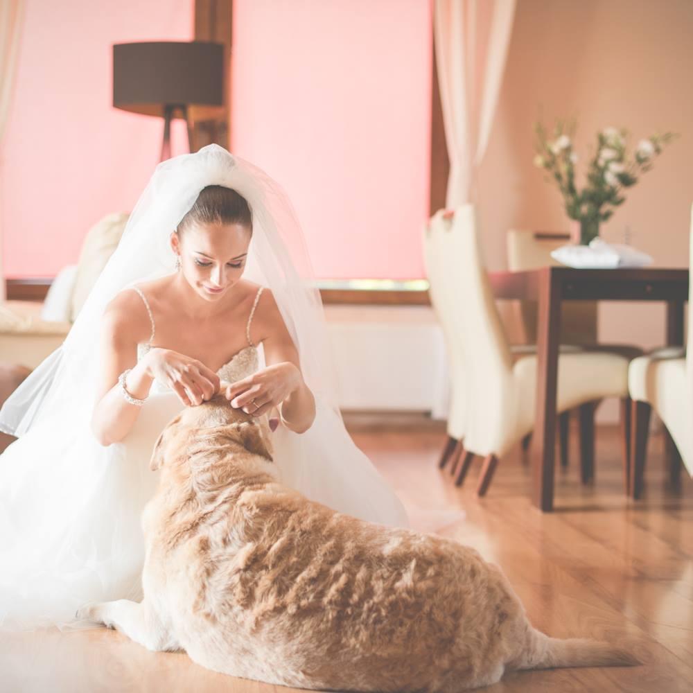 Przygotowania do ślubu | Namysław