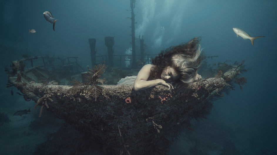 I quitted my job and became an underwater photographer.