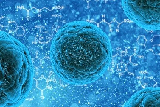 Vaše buňky poslouchají aneb Jak vám mluvení s vaším tělem může pomoci s uzdravením