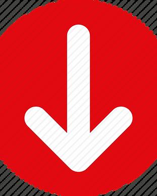 Red_Arrow_Down-512.webp