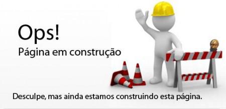 pagina-em-construo3.png