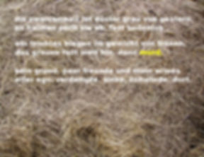serie7-3text.jpg