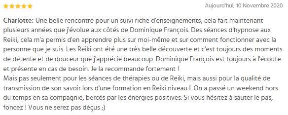 avis-Dominique-François.JPG