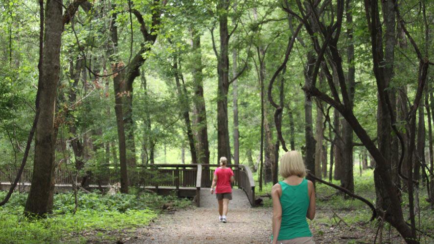 Eco-Trail