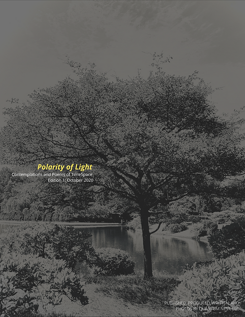Polarity of Light: Contemplations  and Poems of TimeSpace ED. 1