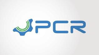 100 AÑOS DE PCR