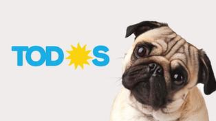 El Síndrome Culposo del Perro Faldero
