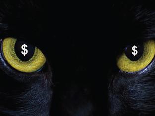 Un gato en la oscuridad