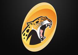 Identidad Jaguares