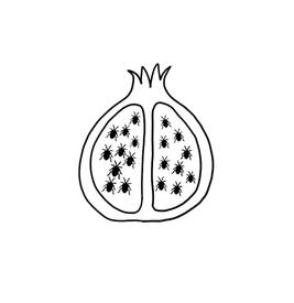pomegranate bugs.jpg