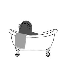 seal bath.JPG