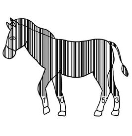 zebra code.png