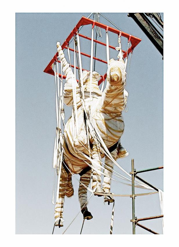The Reiterdenkmal Unbolted, Windhoek, 19 August 2009