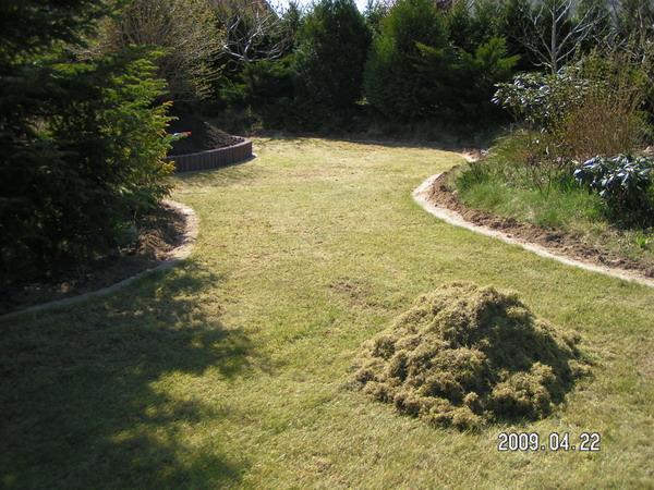 trawnik w trakcie regeneracji