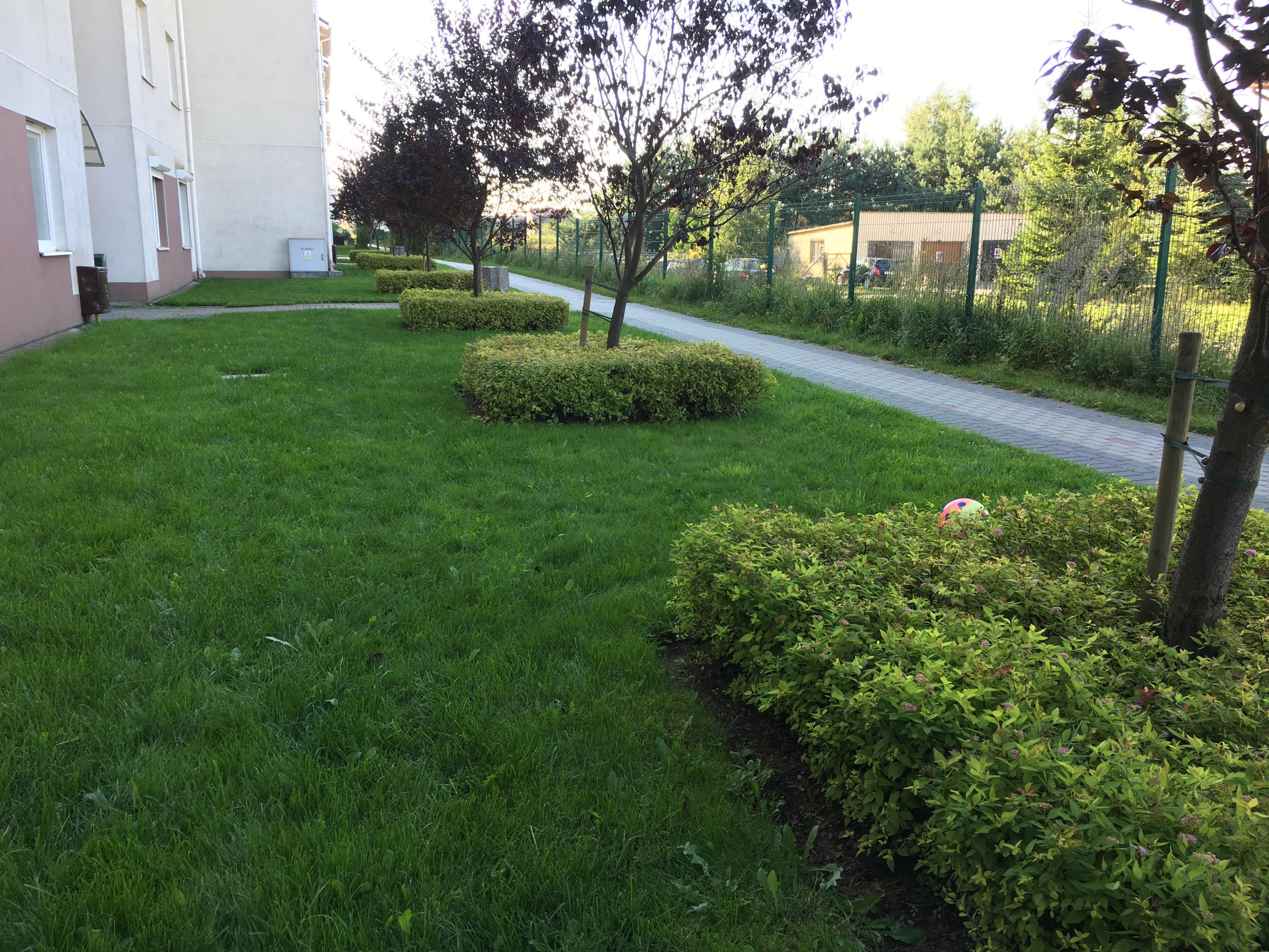 trawnik po rekultywacji