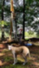 oude buisse heide, achtmaal, Couzijn van leeuwen, metal, metaal