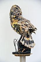 couzijn van leeuwen cardboard paper karton papier vogel