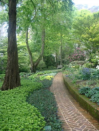 Brick path through garden, green hostas and trees.