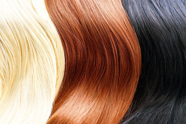 Hair Colors Palette. Different Hair colours Hair Texture. Blonde, brown and black hair colours.jpg