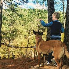 enfant et chien éducation canine