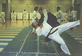 Mixed Martial Arts (MMA), dojo, Jujutsu, Japanese jujutsu, karate, judo, kickboxing, street fighting, military training, self-defense, katana, samurai sword, erik paulson, combat submission wrestling, Shihan William Pearson, James Marler