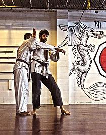 Ni Tatsu-Ryu, Mixed Martial Arts (MMA), dojo, Jujutsu, Japanese jujutsu, karate, judo, kickboxing, street fighting, military training, self-defense, katana, samurai sword, erik paulson, combat submission wrestling, erik paulson csw,