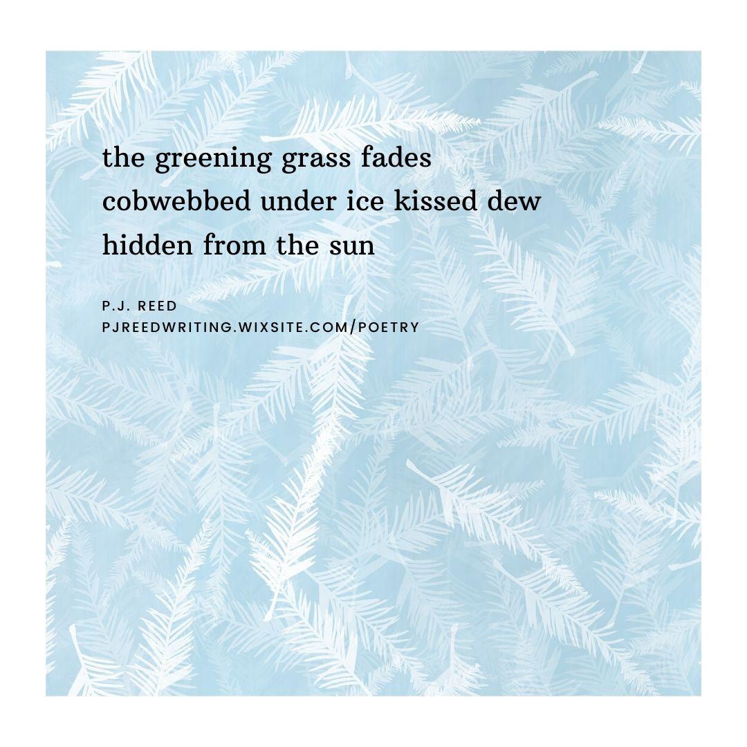 haiku 2.jpg