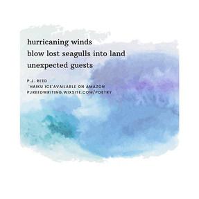 Haiku 5 - A haiku for stormy days from '
