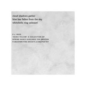 haiku 13 by P.J. Reed.png