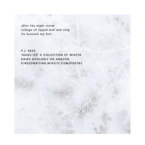 haiku 15 by P.J. Reed