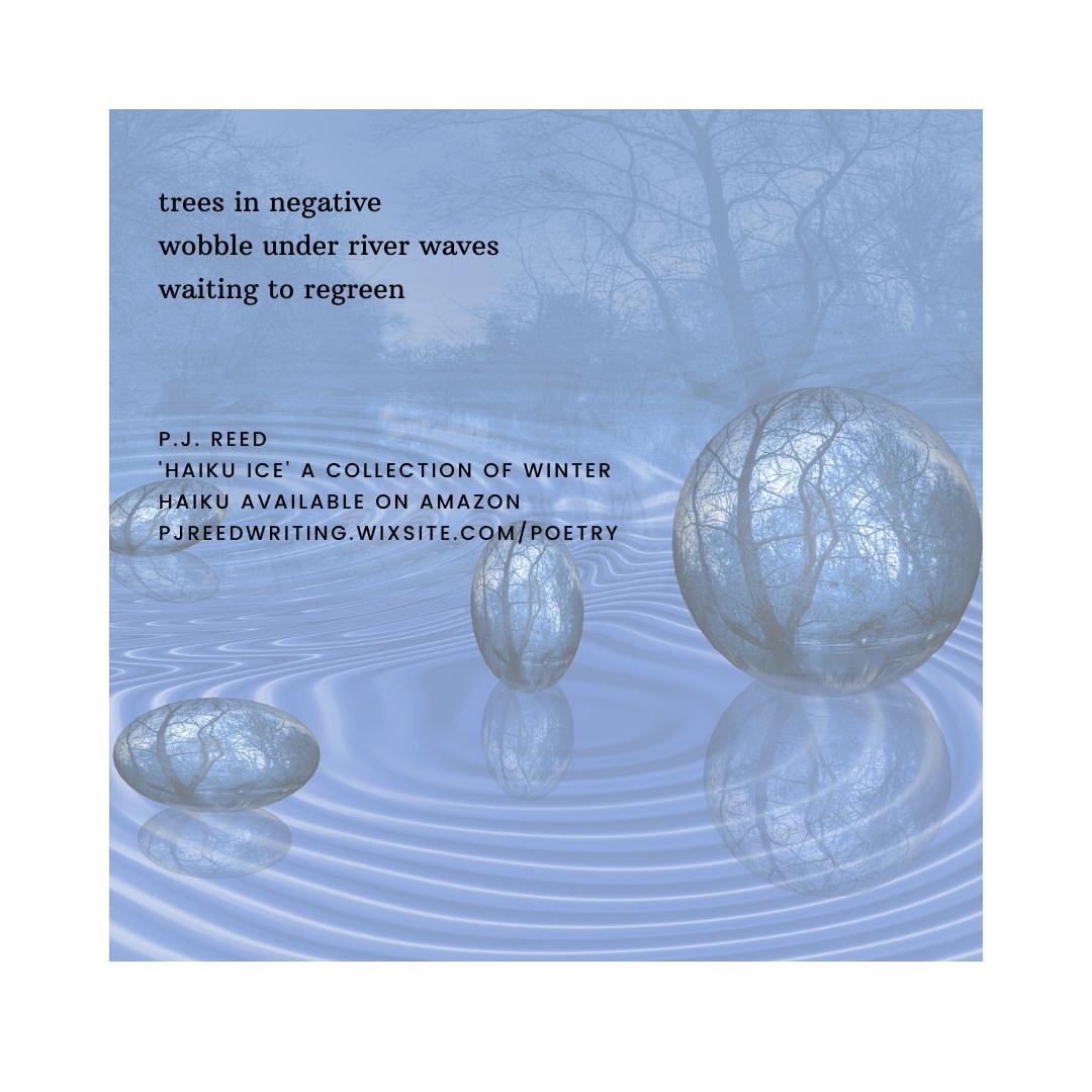 haiku 9 by P.J. Reed
