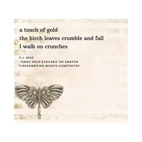 haiku 4.png