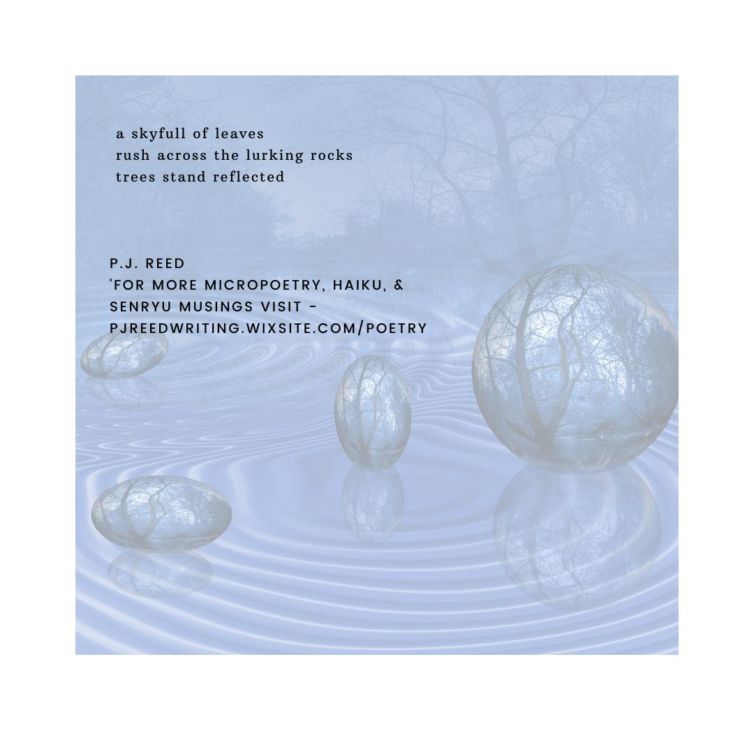 _haiku 27  by P.J. Reed.png