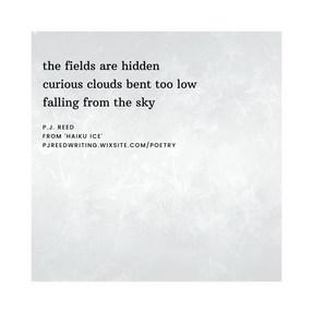 haiku 3.jpg