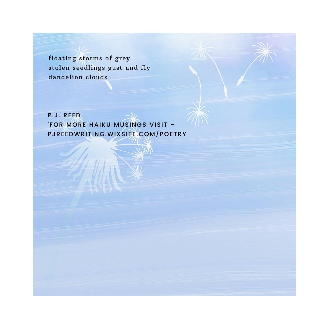 haiku 18 by P.J. Reed