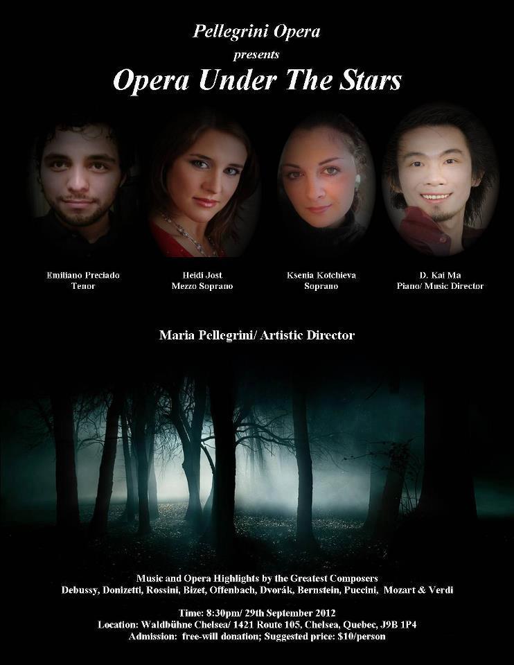 Opera under the Stars 2012