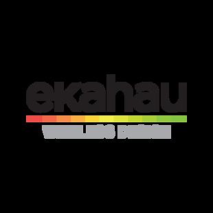 Ekahau wifi