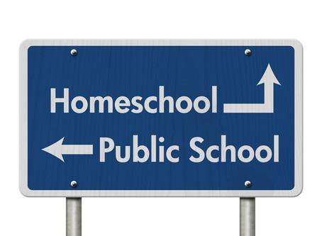 Public School v. Homeschooling: My Dirty Little Secret