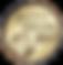 Gold medal 2017.png