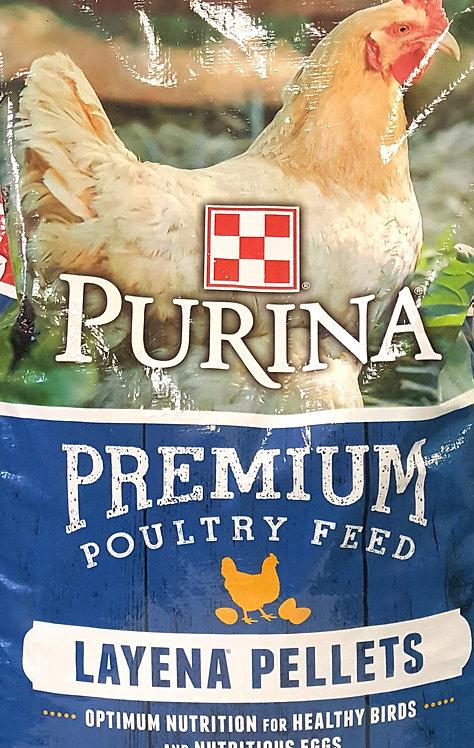 Purina Layer Feed