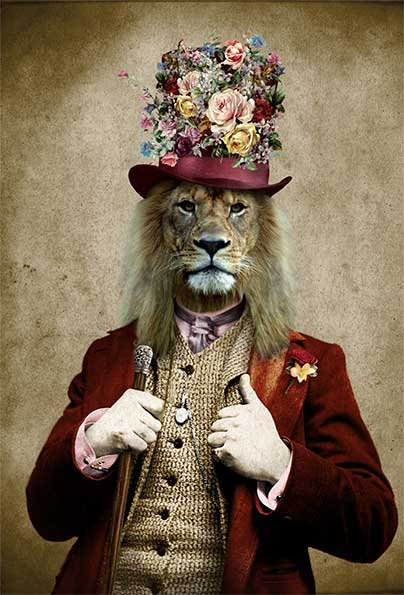 Dandy Lion (Sold Out)