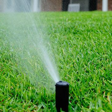 Irrigation Startup
