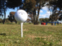 Wallaroo Golf Club - Ball On Tee
