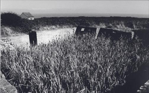 Bunker+overgrown.jpg