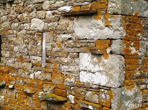 stone wall alternative.jpg