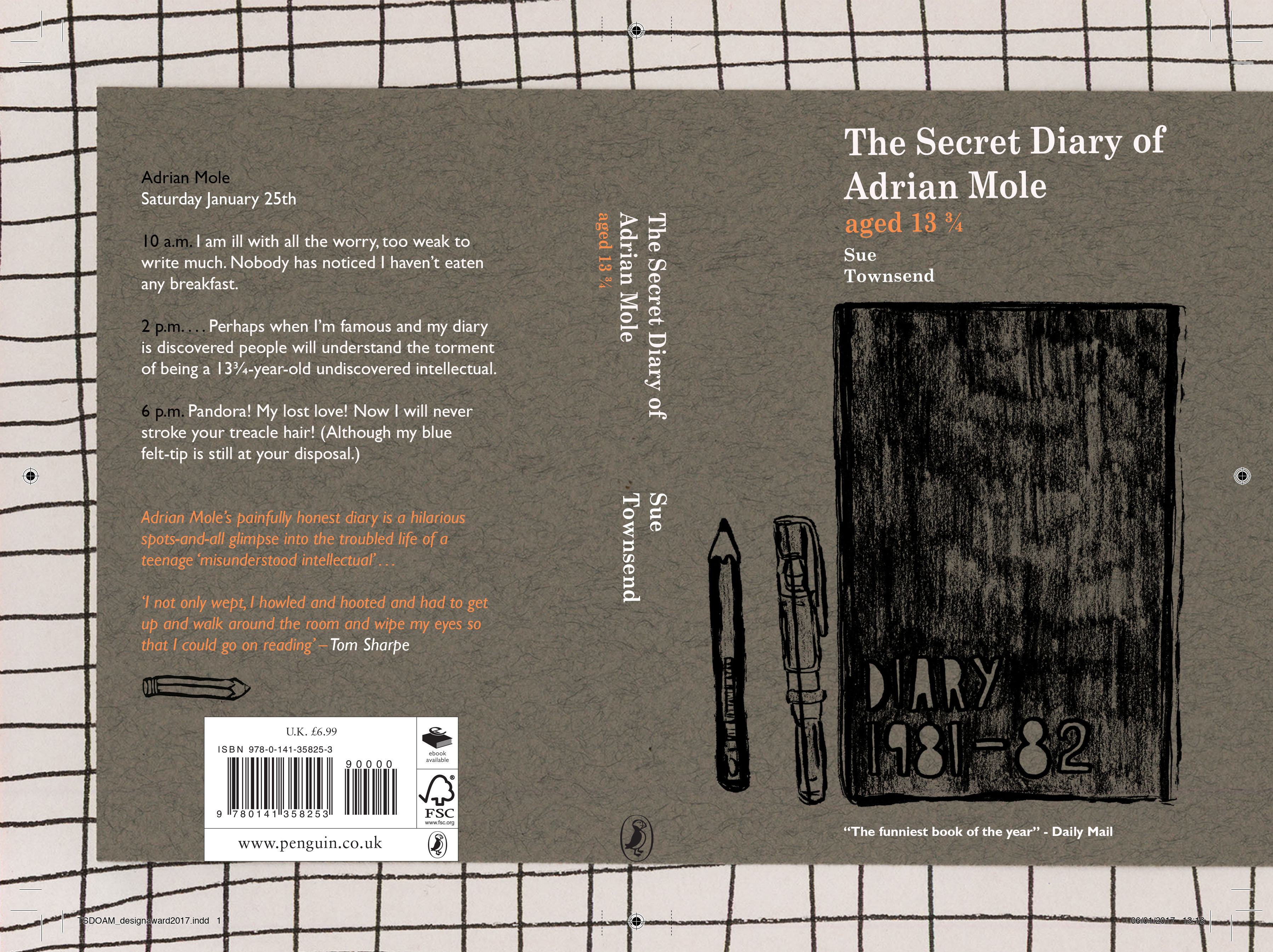 Adrian Mole Book cover 13 Grey and Orang