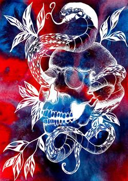 Skull colour v6