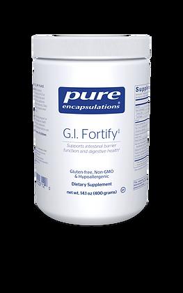GI Fortify 400 gms