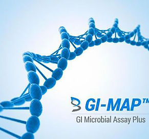 GI-MAP-logo-dna.jpg