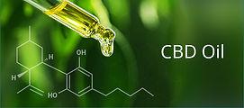 cbd-oil-clear-tincture.jpg